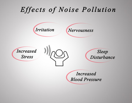 noise pollution: Effects of Noise Pollution