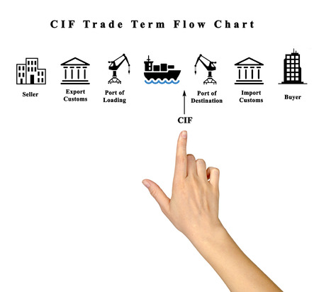 importer: CIF Trade Term Flow Chart Stock Photo