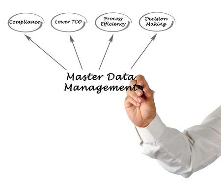 master: Diagram of Master Data Management Stock Photo