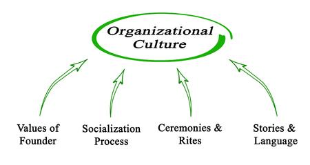 culture: Organizational Culture