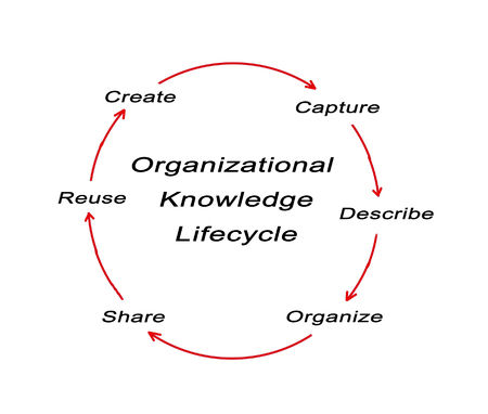 ciclo de vida: Ciclo de Vida del conocimiento de la organización Foto de archivo