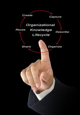 lifecycle: Ciclo de Vida del conocimiento de la organización;