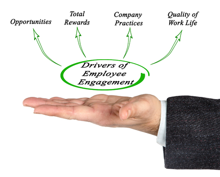 Drivers of Employee Engagement