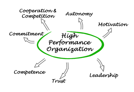 autonomia: Organización de Alto Desempeño