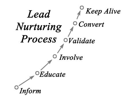 involvement: Lead Nurturing Process Stock Photo