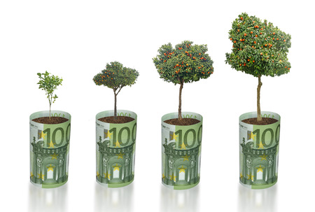 subsidy: Citrus trees growing from euro bill Stock Photo