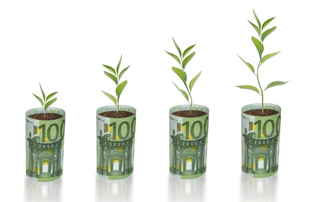 offset up: sapling growing from euro