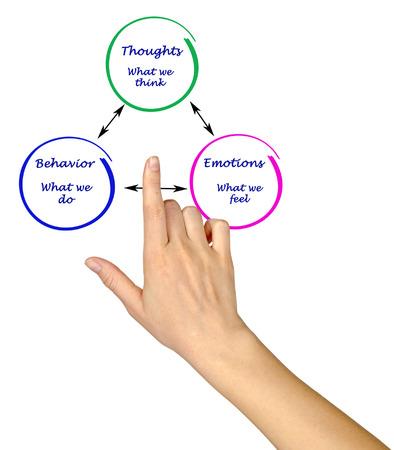 cognicion: Relationship between cognition, emotions, and behavior
