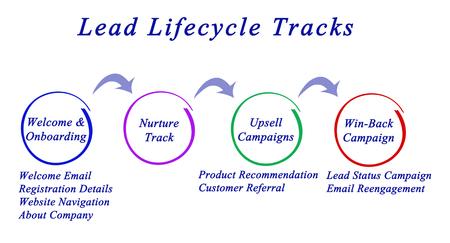 ciclo de vida: Pistas del ciclo de vida de plomo Foto de archivo