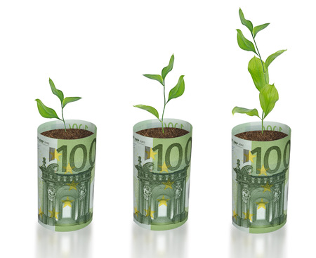 forestation: sapling growing from euro