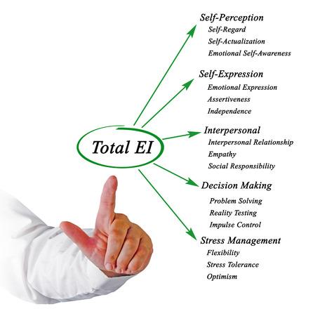 self testing: Total emotional intelligence