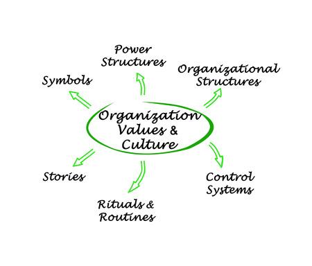 culture: Organization Values & Culture