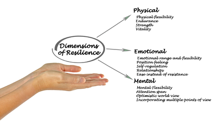 dimensions: Dimensions of Resilience Stock Photo