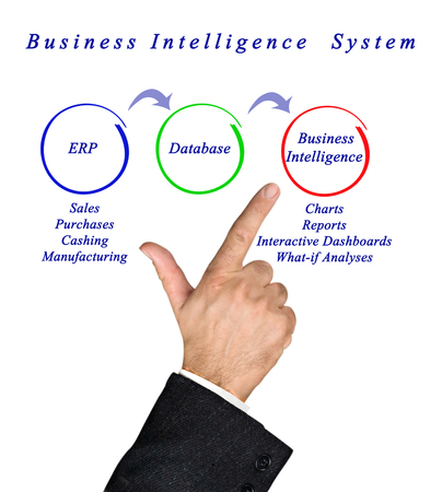 analyses: Business Intelligence System