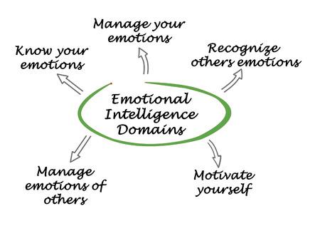 domains: Emotional Intelligence Domains