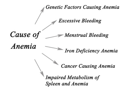causes: Causes of Anemia Stock Photo