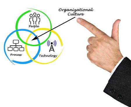 culture: Diagram of Organizational Culture
