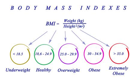 max: Body Max Index