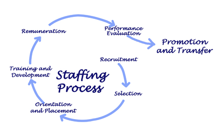 staffing: Staffing Process