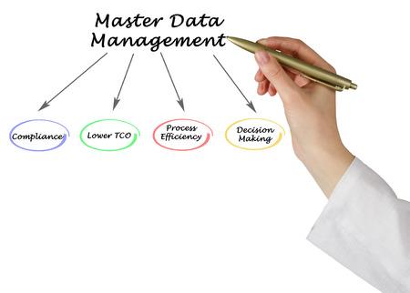 Diagram of Master Data Management Stock Photo