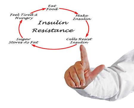 Desarrollo de resistencia a la insulina.