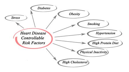Heart disease controllable risk factors Stock Photo