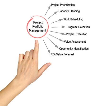 Project portfolio management 스톡 콘텐츠