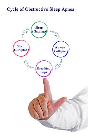 Cycle of Obstructive Sleep Apnea