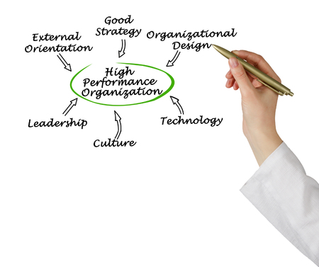 High Performance Organization
