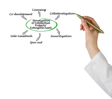 Monetization of Intellectual PropertyIntangible Assets