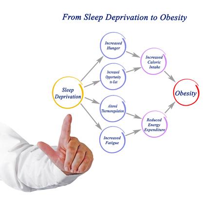 De la privación del sueño a la obesidad