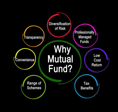 Warum Investmentfonds