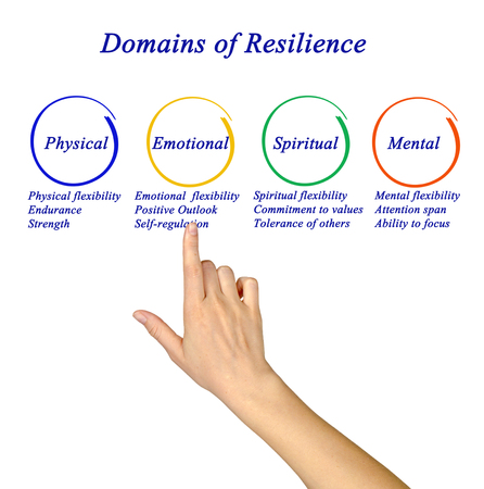 Domains of Resilience Standard-Bild