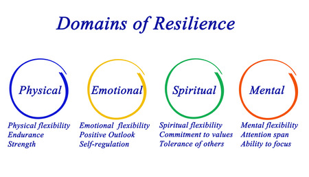 Domains of Resilience Stockfoto