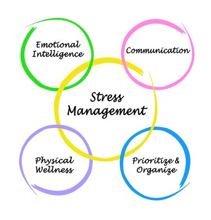 Vier Komponenten des Stressmanagements