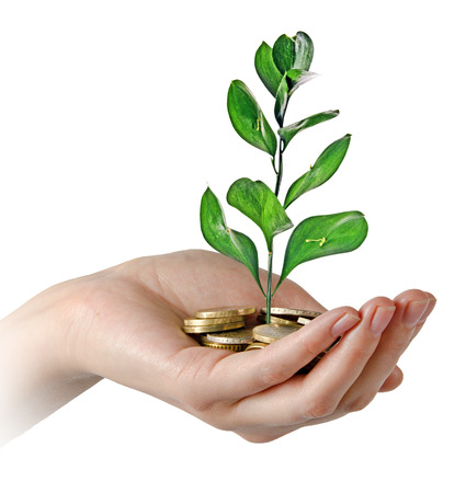 Investing to green business Stock Photo - 124885662
