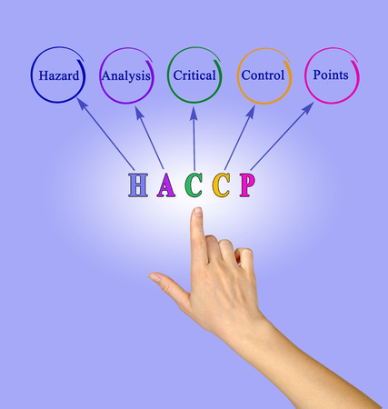 Diagram of HACCP Regulatory Requirements 版權商用圖片 - 125109152