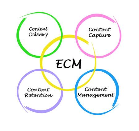 Components of Enterprise content management