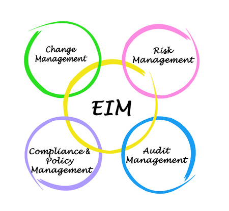 Four components of EIM Audit