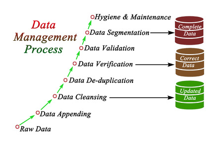 Components of Data Management Process