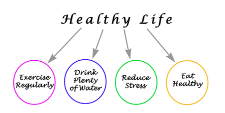 Diagram of healthy life 版權商用圖片 - 125605343