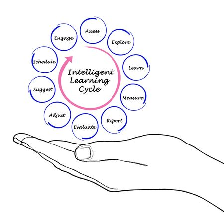 Stages of Intelligent Learning Cycle