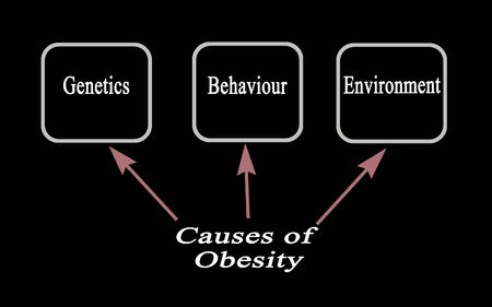Three Cause of Obesity: Genetics, Behaviour, Environment Stock Photo