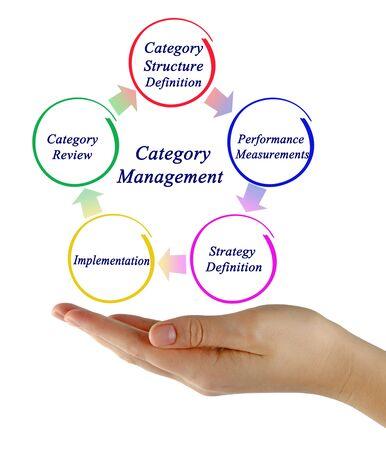 Cinq étapes de la gestion de catégorie Banque d'images