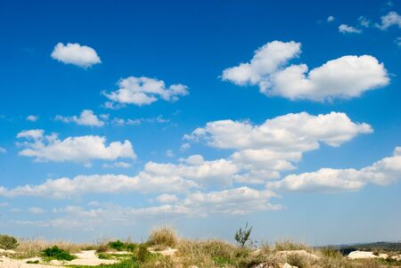 Sand of Israeli mediterranean sea shore