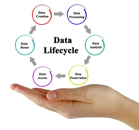 Stages of Data Life cycle