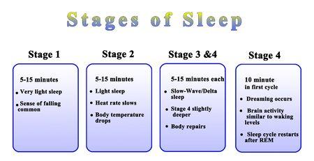 Four Stage of Night Sleep Фото со стока