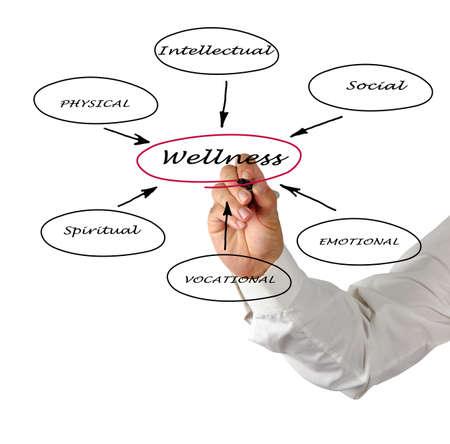Diagram of wellness