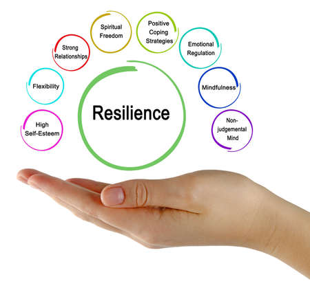 Presenting Eight drivers of Resilience