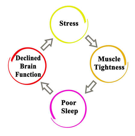 From stress to declining brain functions
